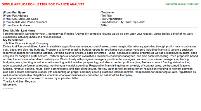 finance analyst application letter template