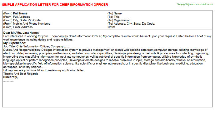 Chief Information Officer Application Letter Template