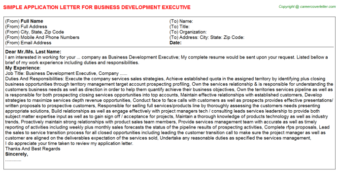 Business Development Executive Application Letter Template