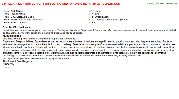 testing and analysis department supervisor application letter template