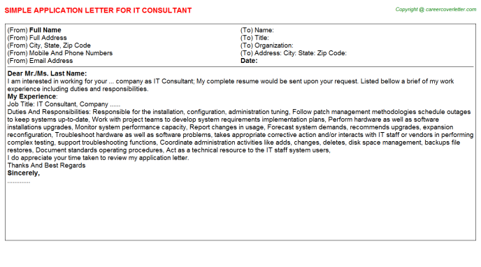 IT Consultant Application Letter Template