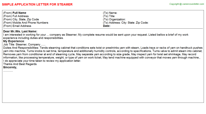 Steamer Job Application Letter Template