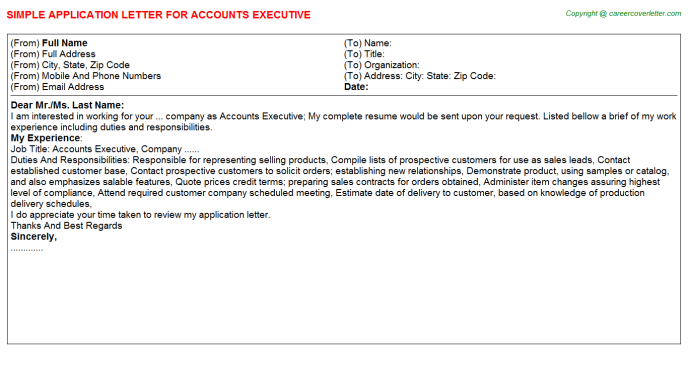 Accounts Executive Job Application Letter Template