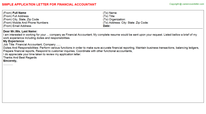 Financial Accountant Application Letter Template