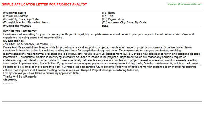 Project Analyst Application Letter Template