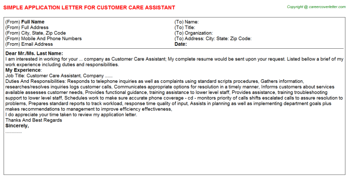 Customer Care Assistant Application Letter Template