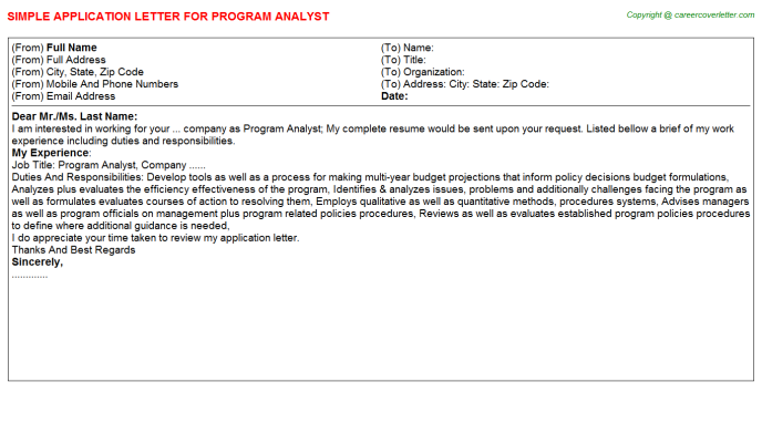 Program Analyst Application Letter Template