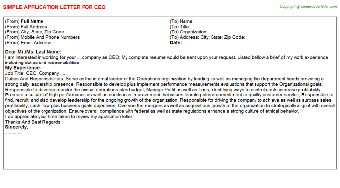 CEO Job Application Letter Template