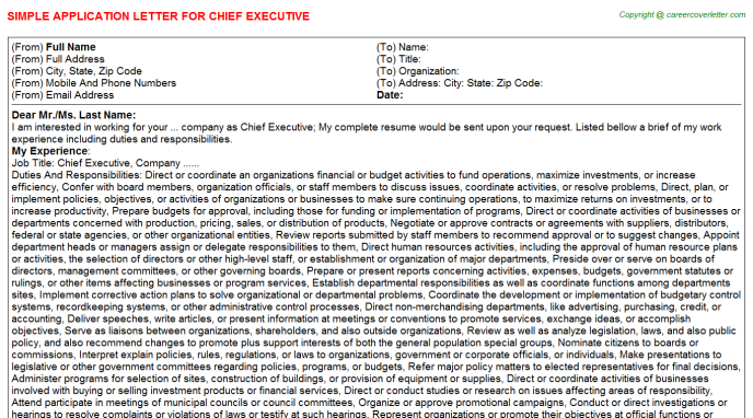 Chief Executive Application Letter Template