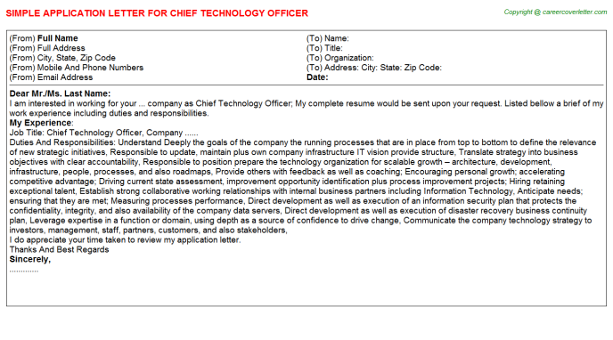 Chief Technology Officer Application Letter Template