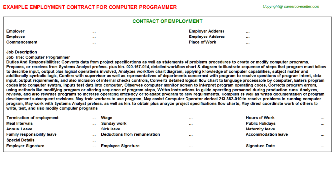 Computer Programmer Employment Contract Template