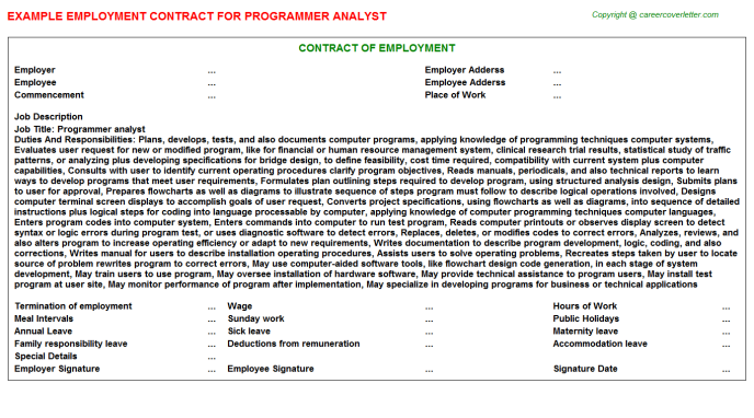 programmer analyst employment contract template