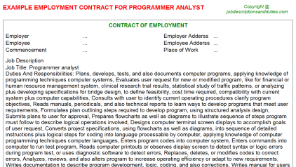 Programmer analyst Job Employment Contract Template