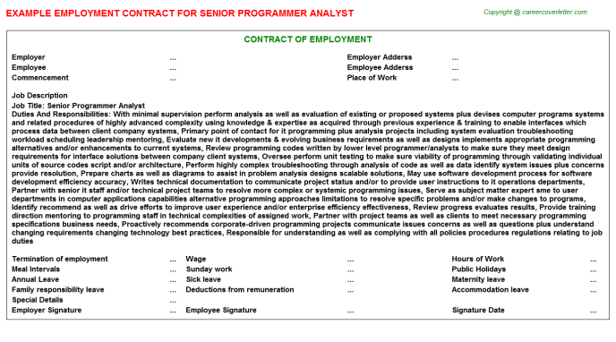 senior programmer analyst employment contract template