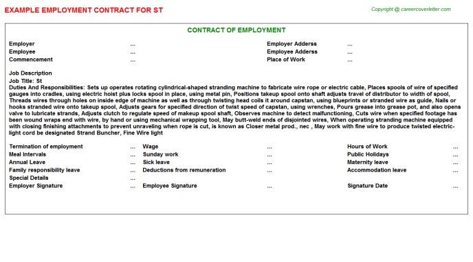 St Employment Contract Template