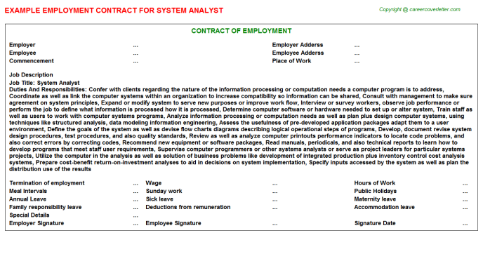 System Analyst Employment Contract Template