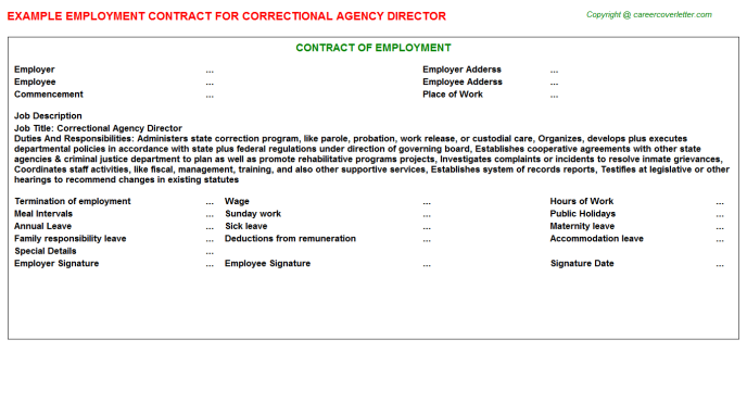 correctional agency director employment contract template