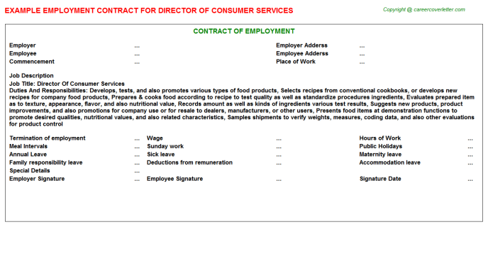 director of consumer services employment contract template