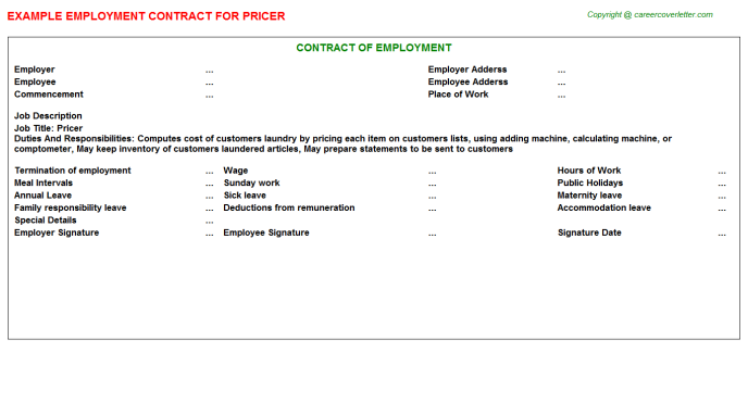 Pricer Job Employment Contract Template