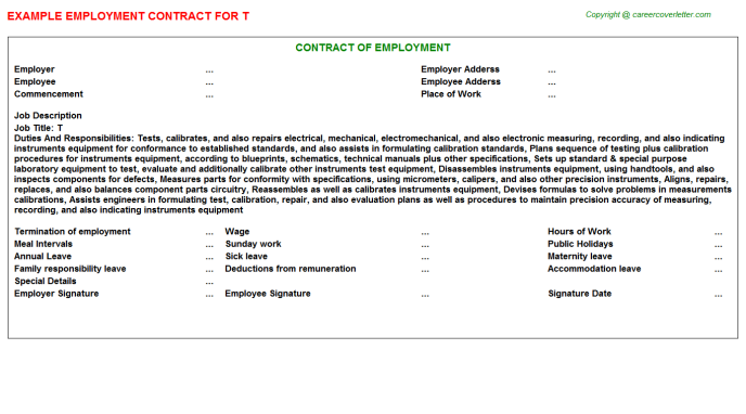 T Employment Contract Template