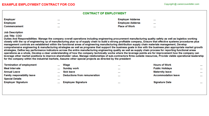 COO Employment Contract Template
