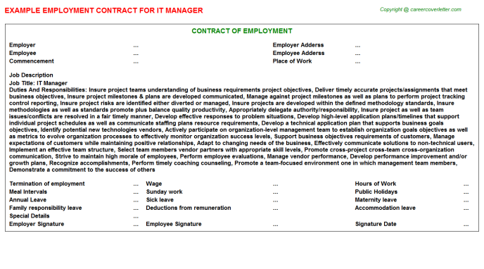 IT Manager Employment Contract Template