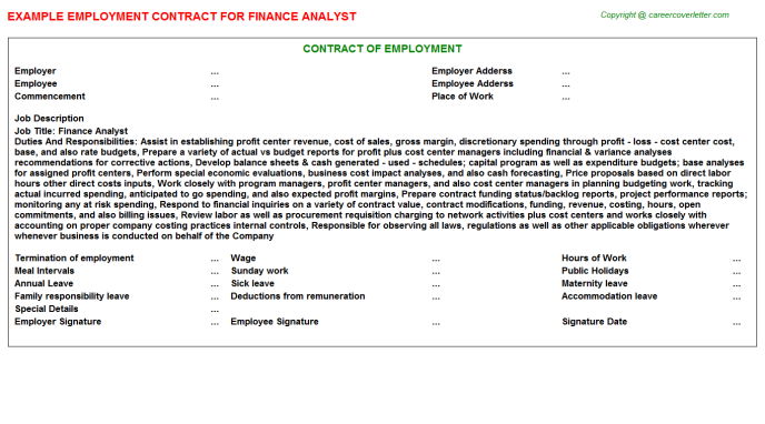 Finance Analyst Job Employment Contract Template