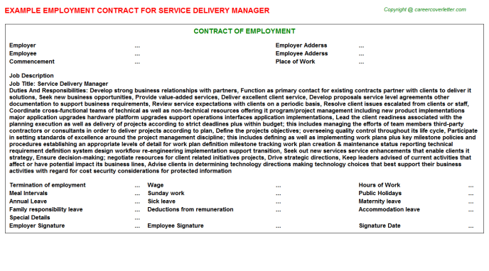 Service Delivery Manager Employment Contract Template