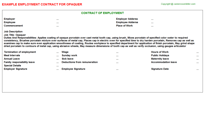 Opaquer Job Employment Contract Template