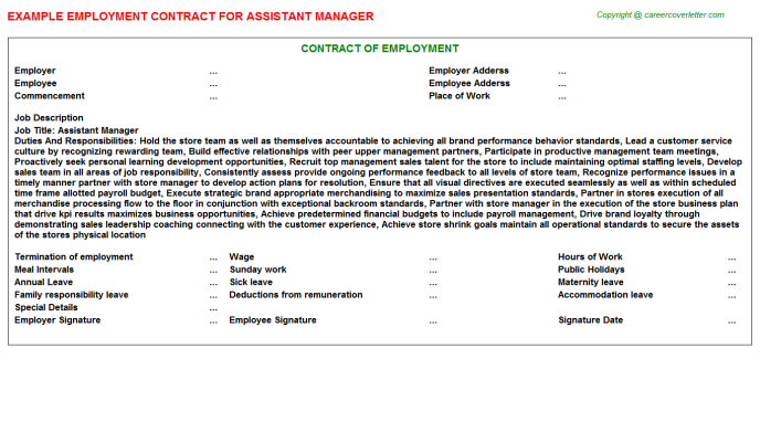 Assistant Manager Employment Contract Template