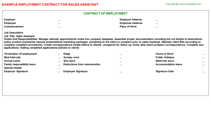 Sales Assistant Employment Contract Template