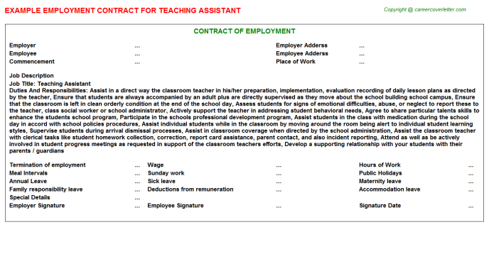 Teaching Assistant Employment Contract Template