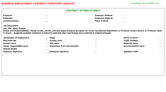 story analyst employment contract template