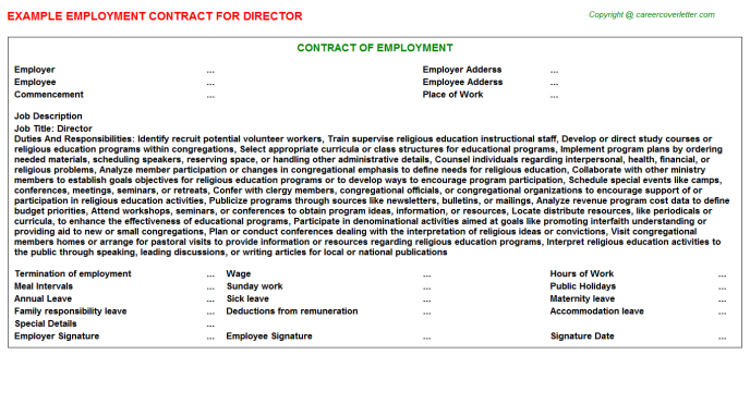 Director Job Employment Contract Template