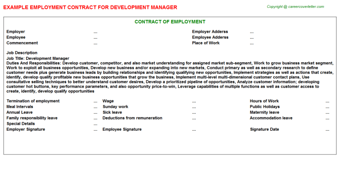 Development Manager Employment Contract Template