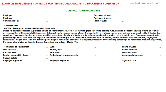 testing and analysis department supervisor employment contract template