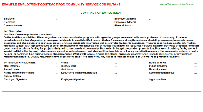 community service consultant employment contract template