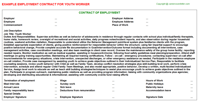 Youth Worker Employment Contract Template