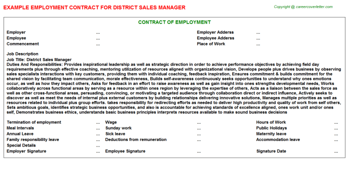 District Sales Manager Employment Contract Template