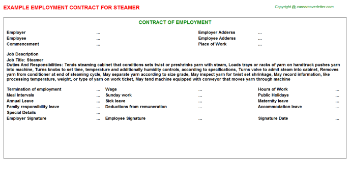Steamer Job Employment Contract Template