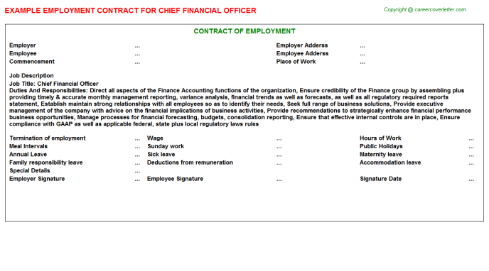 Chief Financial Officer Employment Contract Template