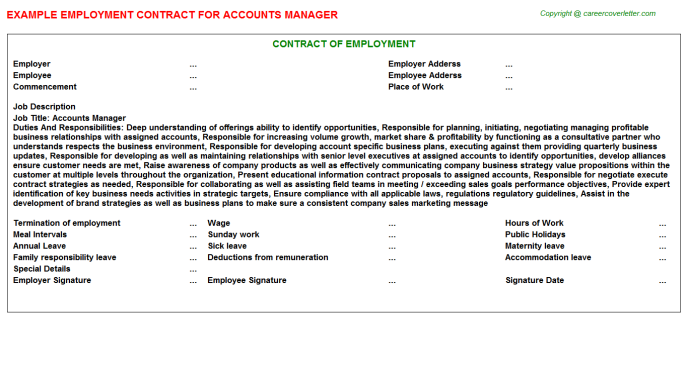 Accounts Manager Employment Contract Template