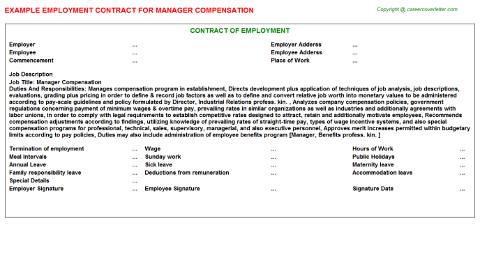 Manager Compensation Employment Contract Template
