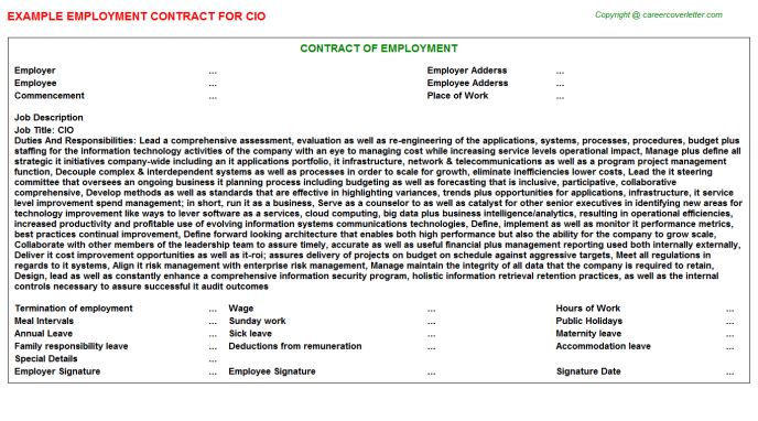 CIO Job Employment Contract Template