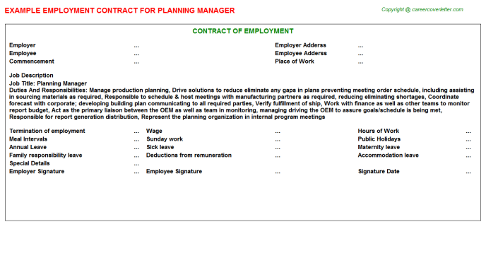 Planning Manager Employment Contract Template