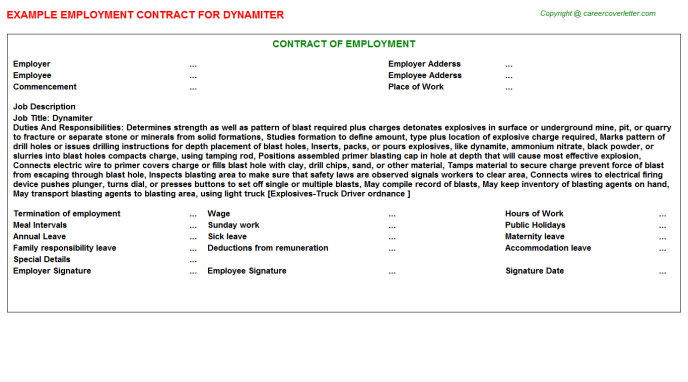 Dynamiter Job Employment Contract Template