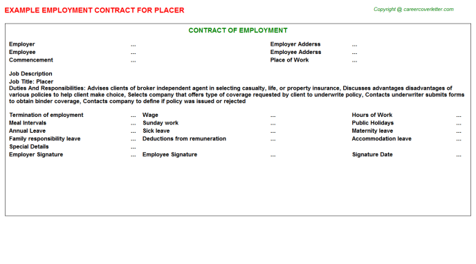 Placer Job Employment Contract Template