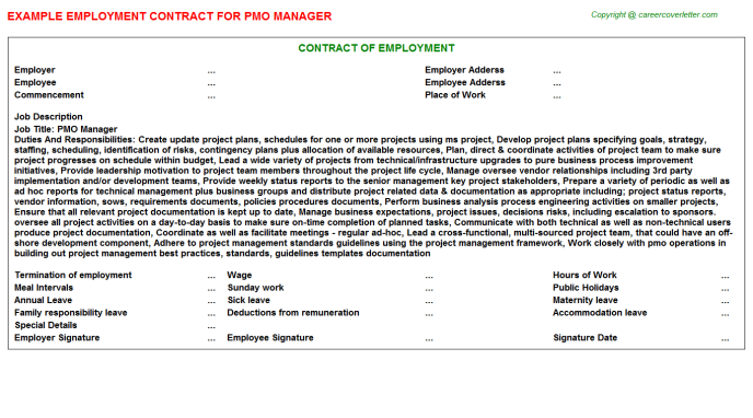 Pmo Manager Employment Contract Template