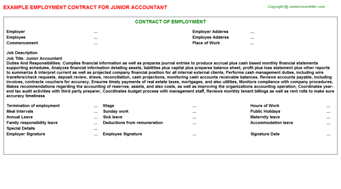 Junior Accountant Employment Contract Template