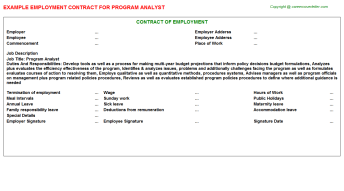 Program Analyst Employment Contract Template